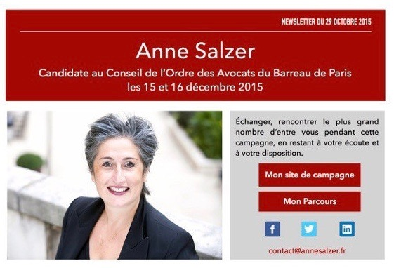 Anne-Salzer-Newsletter-01-copie-2-2-e1446632822323 (1)
